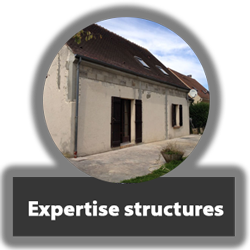 Expertise-structures